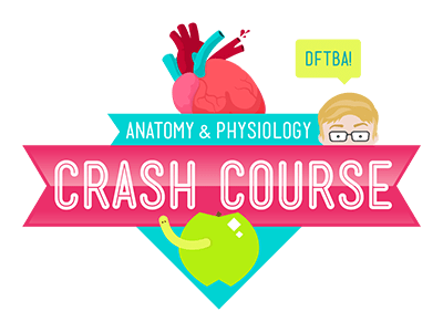 Crash Course Anatomy & Physiology