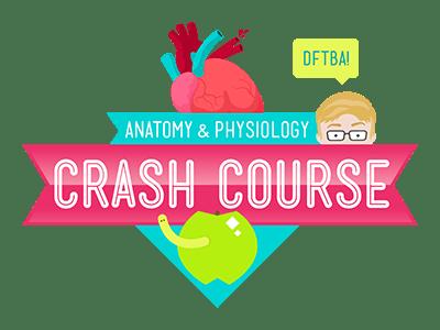 Crash Course Anatomy & Physiology