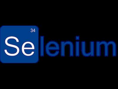 logo Centro Selenium